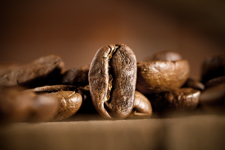 beans of coffee on dark background photo