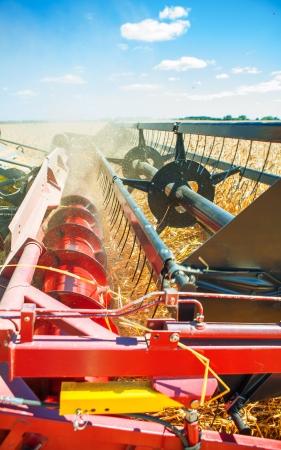 combine harvester: Cosechadora muy de cerca