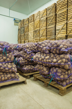 close up view on bags of potato in storage house photo
