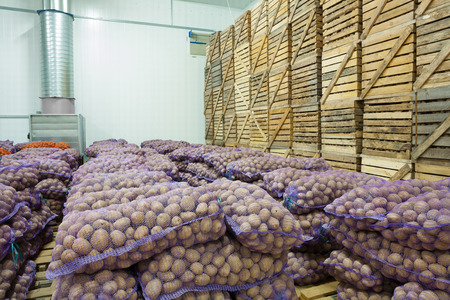 view on bags and crates of potato in storage house