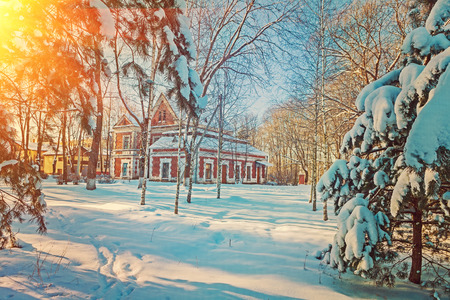 wintry snow-covered  rural fairy view photo