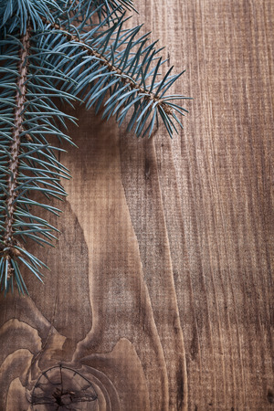 pinetree: copyspace image pinetree branch on old wooden board close up