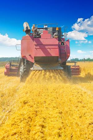 cosechadora: cosechadora en el trabajo posterior concepto de vista agr�cola Foto de archivo