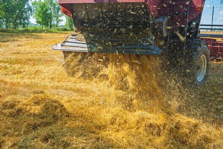 cosechadora: muy de cerca la vista de la cosechadora en el trabajo de la parte trasera de la cosecha Foto de archivo