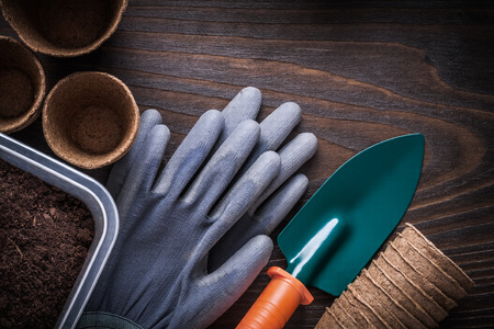 peaty: Hand shovel rubber gloves gardening box with soil and peat glasses on vintage wood background agriculture concept.
