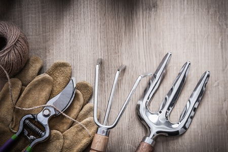 cutting tools: Gardening rake trowel fork leather safety gloves sharp metal secateurs and skein of twine on wooden background agriculture concept.