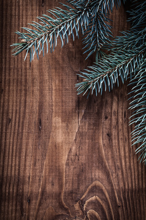 copyspace: branches of fir tree on vintage wooden board with copyspace.