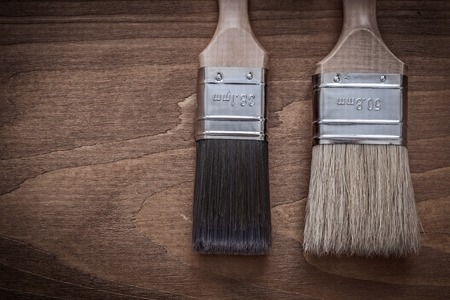 bristle: Two paintbrushes with wood handles and bristle horizontal version.