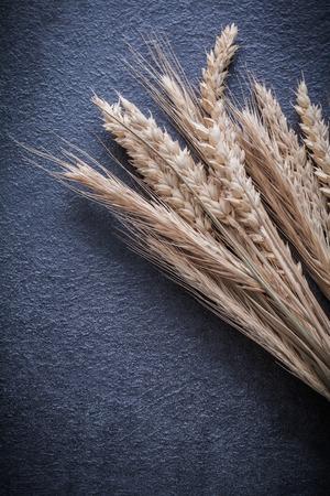 backcloth: Wheat rye ears on black background vertical version.