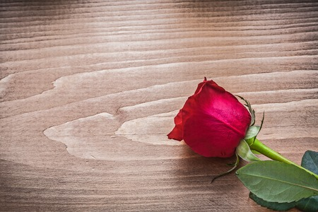 scented: Red scented rose on wooden board holiday concept. Stock Photo