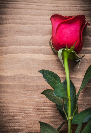 scented: Scented rose on wooden board vertical version holiday concept.