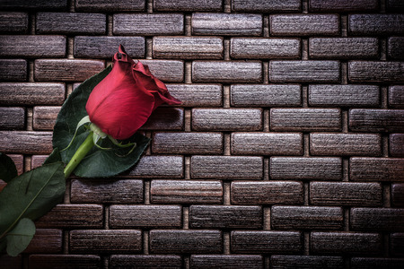 matting: Expanded scented natural rose on wicker wooden matting holiday concept.