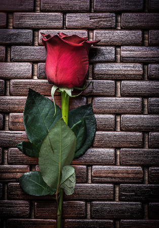 matting: Expanded scented rose on wicker wooden matting holiday concept.