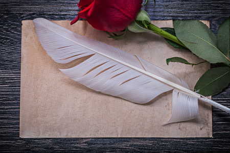 birthday greetings: Vintage paper red rosebud feather on wooden board horizontal image. Stock Photo