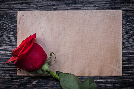 expanded: Vintage paper red expanded rose on wooden board. Stock Photo