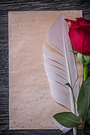 Vintage paper red natural rosebud feather on wooden board. Stock Photo