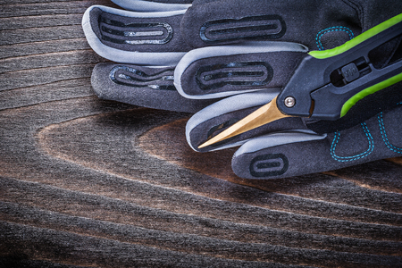 clippers: Working protective gloves clippers on wood board gardening concept.