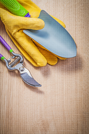 protective gloves: Protective gloves hand shovel secateurs on wooden board gardening concept.