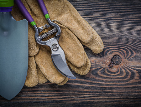protective gloves: Shovel pruning shears protective gloves on wooden board gardening concept.