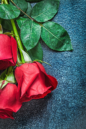 Natural scented red roses on black background holidays concept.