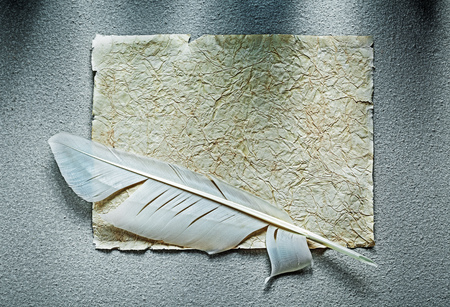 Vintage crumpled paper sheet feather on grey surface.