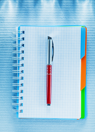 Blank checked notebook biro pen. Stock Photo