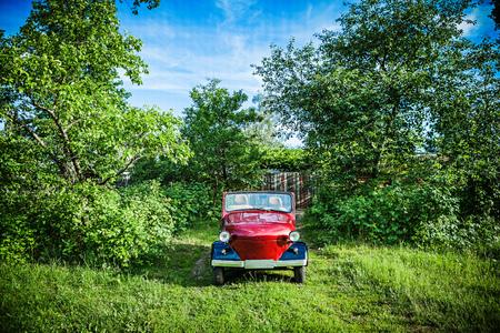 małe czerwone auto retro w zielonych krzakach