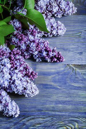 vertikale Version lila Blüten auf Vintage-farbigen Holzbrettern Standard-Bild
