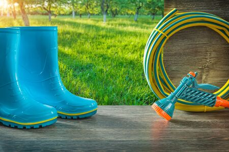 gadening tools in spring sunny garden at sunrise blue rain rubber boots and hose with spray gun