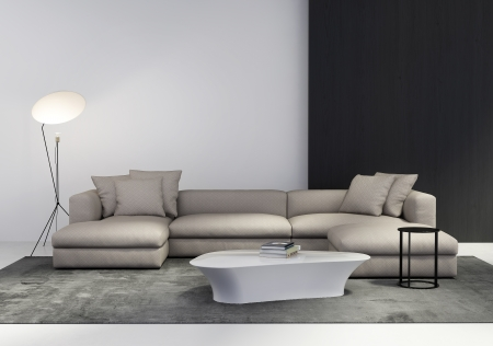 Contemporary stylish living room interior with sofa, coffe table, side table floor light and rug