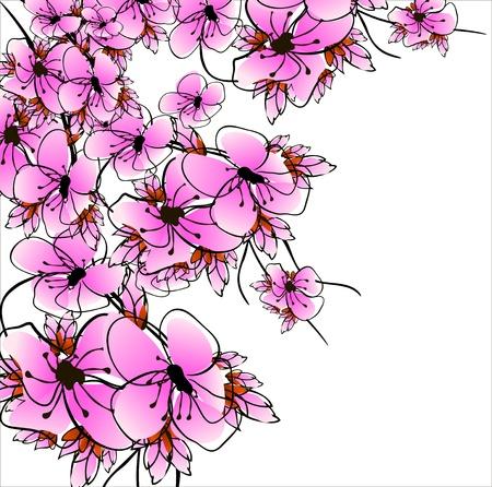 flower sacura