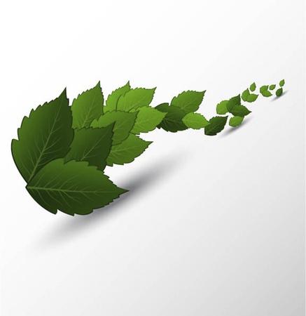 leaves space Vector