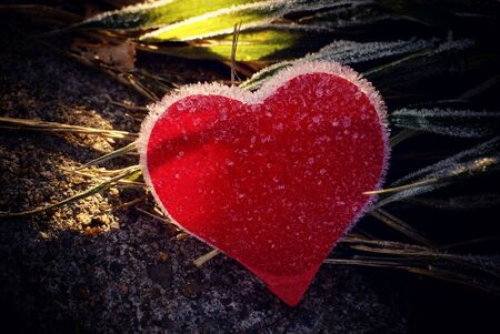 Frozen heart all covered with ice under the rays of the sun