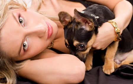 Lying blond woman is holding her chihuahua doggie
