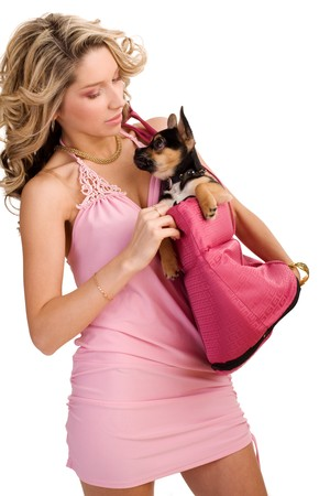Young atrractive woman with a small dog on isolated white photo