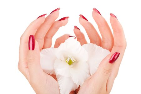 nail care: Closeup image of beautiful nails and woman fingers Stock Photo