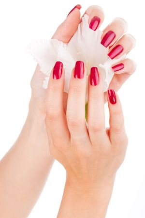 nail care: Closeup image of beautiful nails and fingers with flower over isolated white Stock Photo