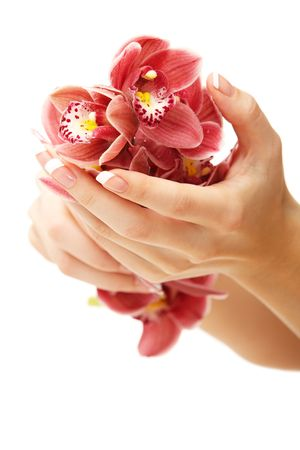 manicure: Hands and orchid over isolated white background