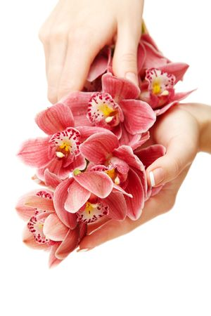 laque: Hands and orchid over isolated white background