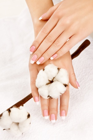 cotton crop: Nicely manicured hands with cotton crop over a towel