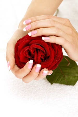 Beautiful manicure nails with a rose photo