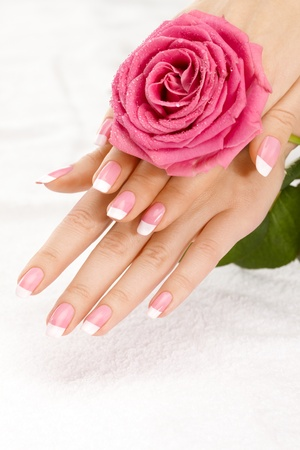 Beautiful manicure nails with a rose Stock Photo - 8580385