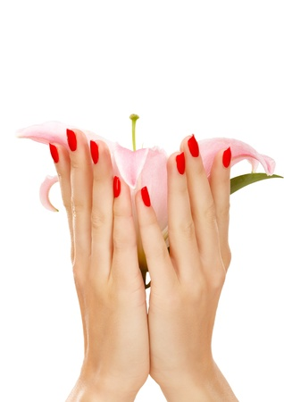 Closeup image of female hands embracing a lily flower