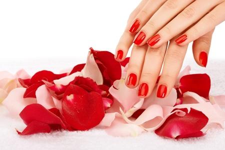 Gros plan image de manucure rouge avec leafs de rose Banque d'images