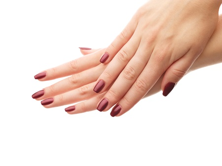 Female hands with perfect manicure over white isolated background Stock Photo - 16298048