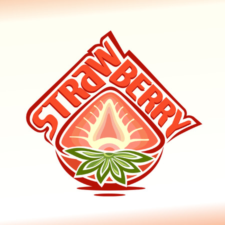 Vector illustration on the theme of strawberry