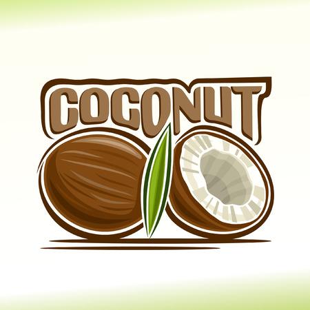 ココナッツのテーマのベクトル図