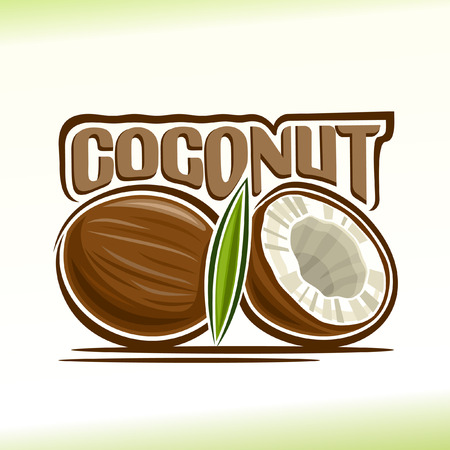 Vector illustration on the theme of coconut Reklamní fotografie - 44272386