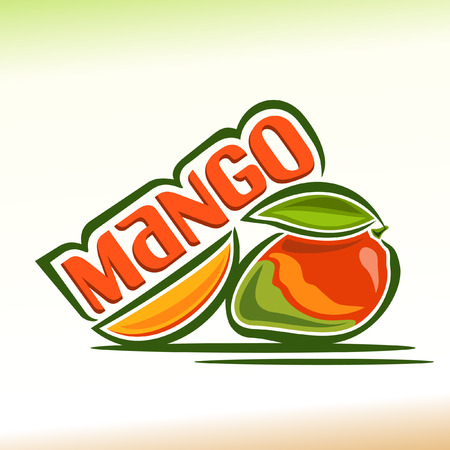 Vector illustration on the theme of mango