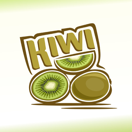 Vector illustration on the theme of kiwi Vettoriali